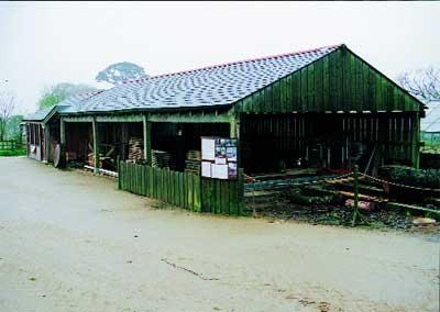General view of the timberyard
