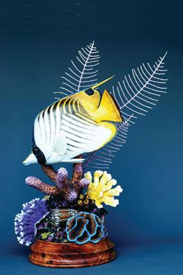 Butterflyfish, 2008