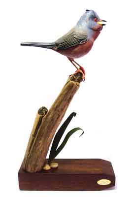 The Dartford Warbler, 380 x 210mm