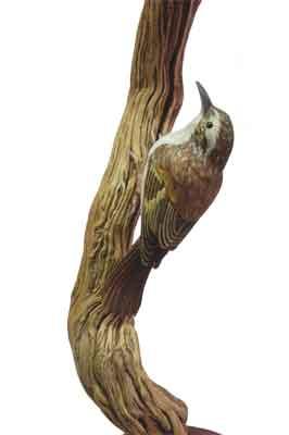 Treecreeper, 460 x 180mm