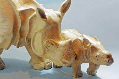 Steve Heath, Rhinos