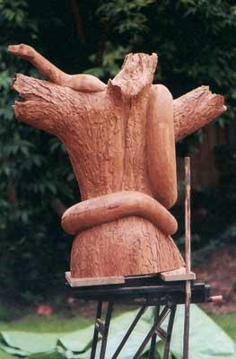 Detail of the bark