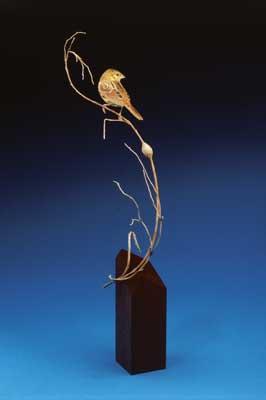 A Henslows sparrow (Ammodramus henslowii)